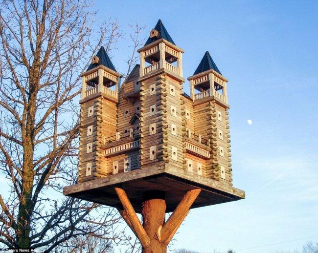 palacios increíbles para las aves de un carpintero canadiense